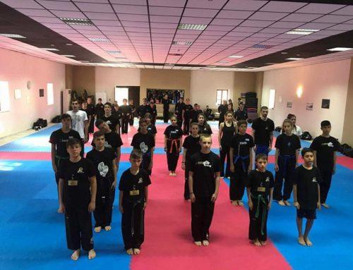 13ο Zen Martial Arts summer camp 2017